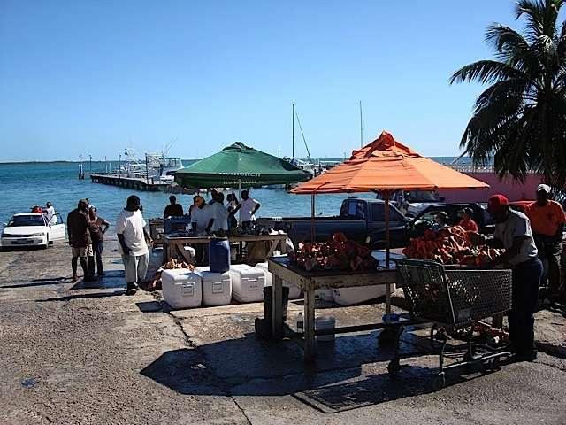 Montagu beach fish market nassau for Bahamas fish market